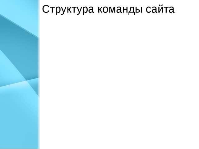 Структура команды сайта