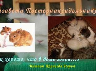 Елизавета Постернаксидельникова «Как хорошо, что в доме звери…» Читает Карасе