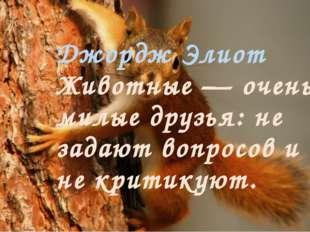 Джордж Элиот Животные — очень милые друзья: не задают вопросов и не критикуют.