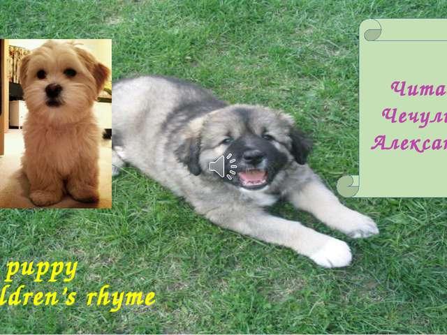 My puppy Children's rhyme Читает Чечулина Александра