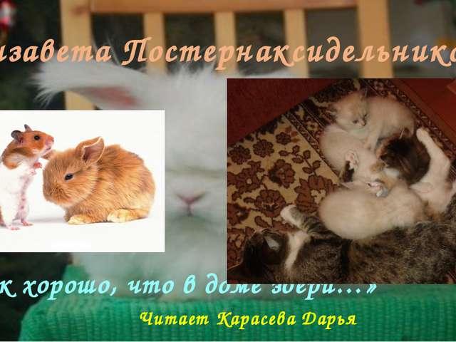 Елизавета Постернаксидельникова «Как хорошо, что в доме звери…» Читает Карасе...