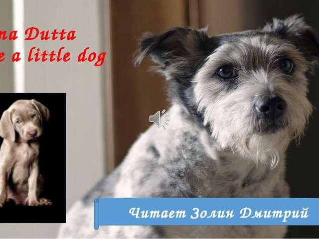 Swapna Dutta I have a little dog Читает Золин Дмитрий