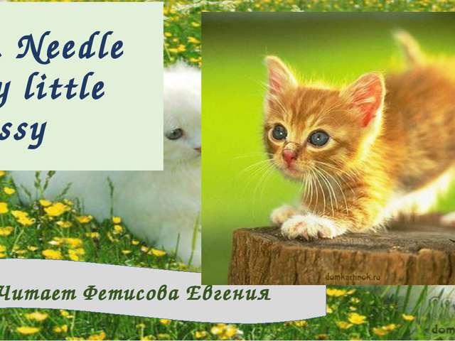 M. Needle My little pussy Читает Фетисова Евгения
