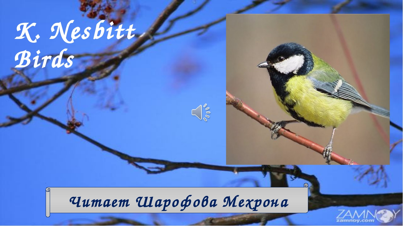 K. Nesbitt Birds Читает Шарофова Мехрона