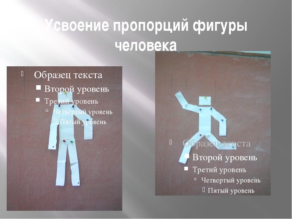 Усвоение пропорций фигуры человека