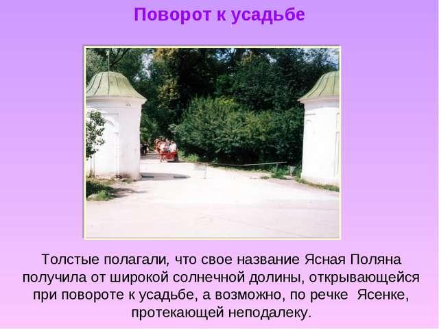 Поворот к усадьбе Толстые полагали, что свое название Ясная Поляна получила о...