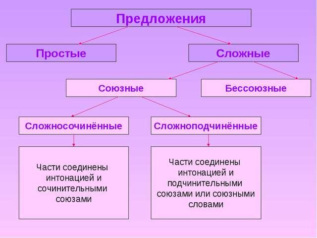 Предложения Простые Сложные Бессоюзные Союзные Сложносочинённые Сложноподчинё...