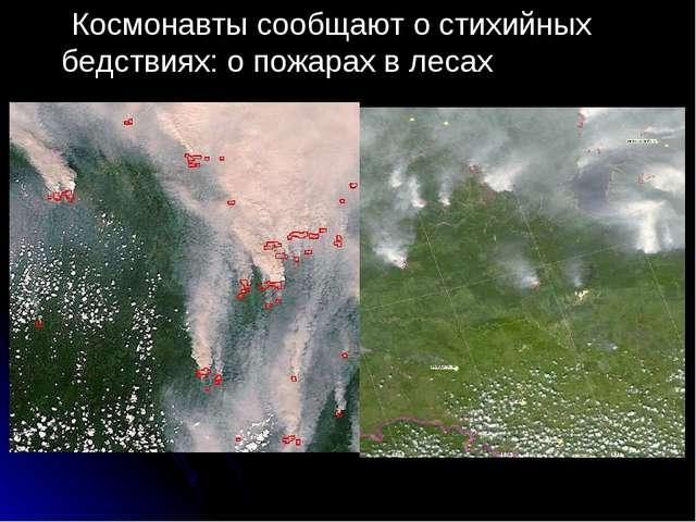 Космонавты сообщают о стихийных бедствиях: о пожарах в лесах