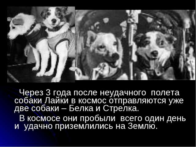 Через 3 года после неудачного полета собаки Лайки в космос отправляются уже...