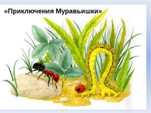 «Приключения Муравьишки»