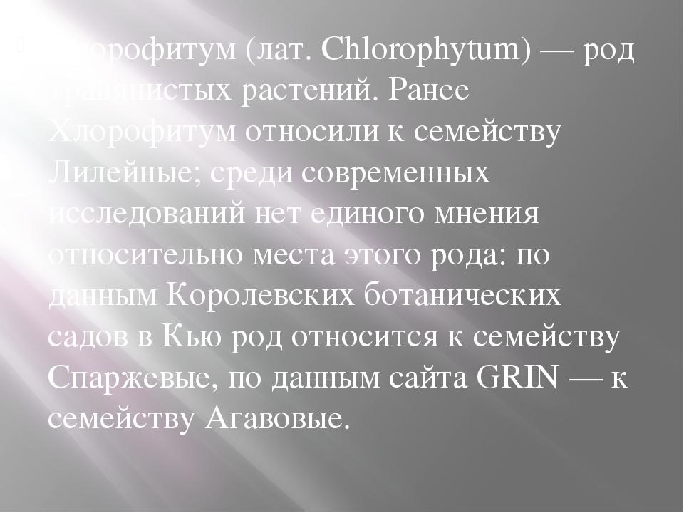 Хлорофитум (лат. Chlorophytum) — род травянистых растений. Ранее Хлорофитум о...