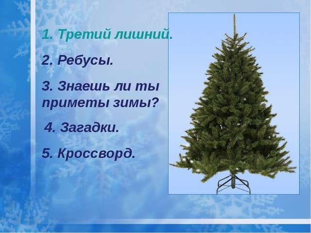 1. Третий лишний. 2. Ребусы. 3. Знаешь ли ты приметы зимы? 4. Загадки. 5. Кро...