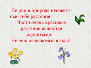 Не рви в природе неизвест- ные тебе растения! Часто очень красивые растения я