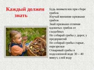 Будь внимателен при сборе грибов Изучай внешние признаки грибов Знай признаки