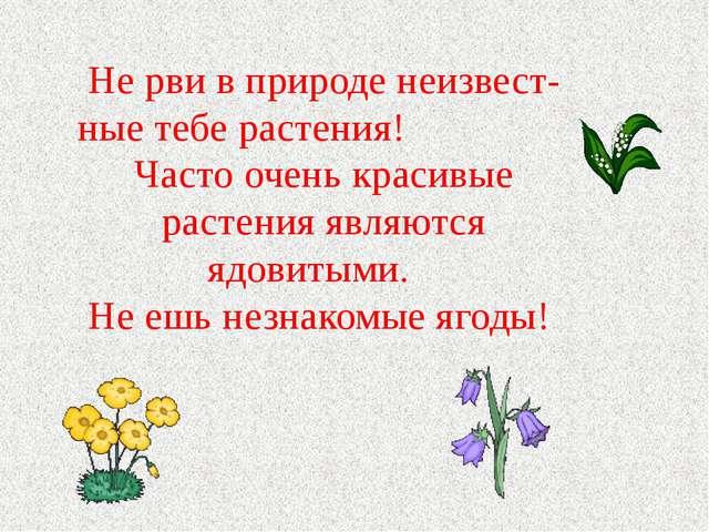Не рви в природе неизвест- ные тебе растения! Часто очень красивые растения я...