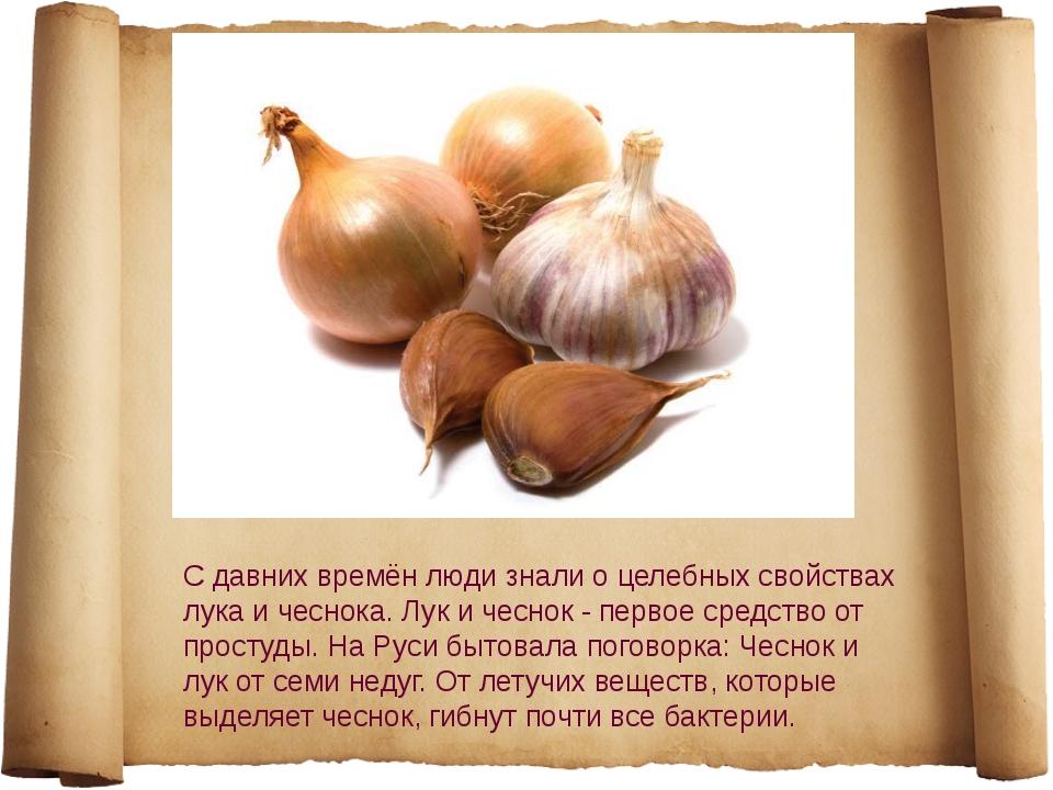 С давних времён люди знали о целебных свойствах лука и чеснока. Лук и чеснок...