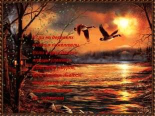 Если на деревьях листья пожелтели, Если в край далеки птицы улетели, Если не