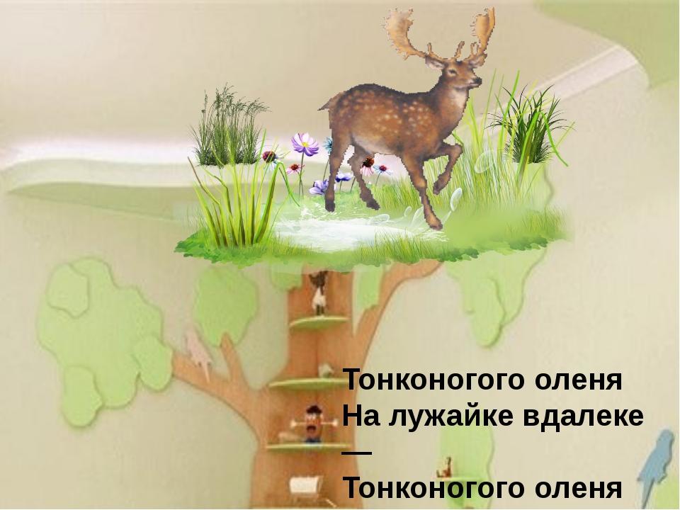 Тонконогого оленя На лужайке вдалеке — Тонконогого оленя Высоко на потолке.