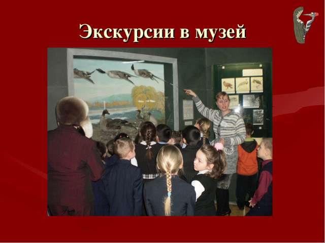 Экскурсии в музей