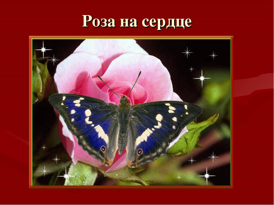 Роза на сердце