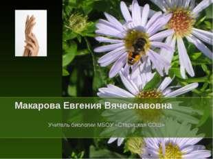 Макарова Евгения Вячеславовна Учитель биологии МБОУ «Старицкая СОШ»