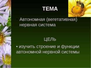 ТЕМА Автономная (вегетативная) нервная система ЦЕЛЬ • изучить строение и функ