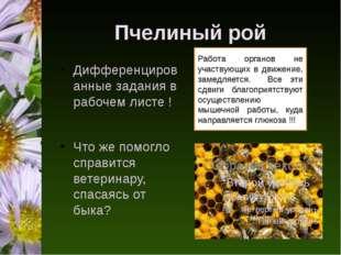 Пчелиный рой Дифференцированные задания в рабочем листе ! Что же помогло спра
