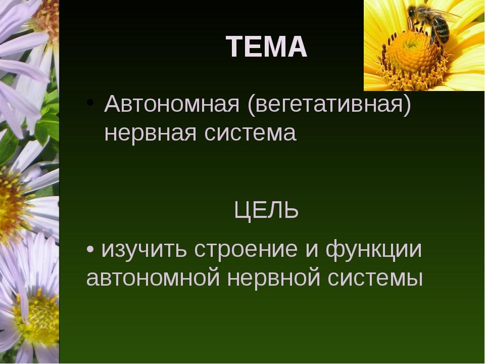 ТЕМА Автономная (вегетативная) нервная система ЦЕЛЬ • изучить строение и функ...