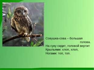 Совушка-сова – большая голова. На суку сидит, головой вертит Крыльями: хлоп,