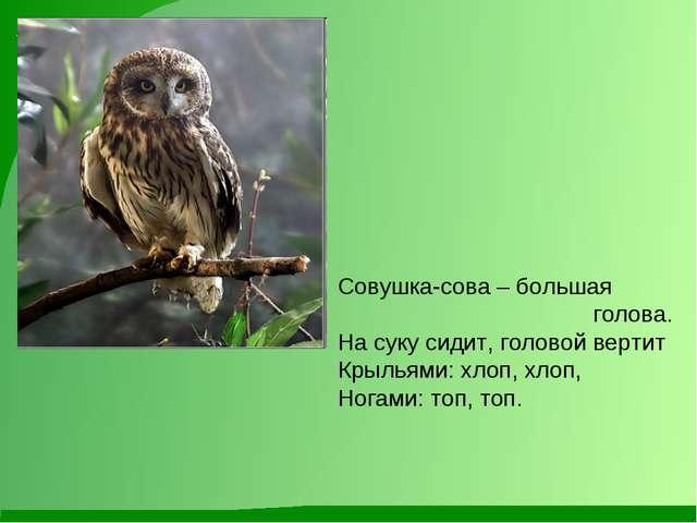 Совушка-сова – большая голова. На суку сидит, головой вертит Крыльями: хлоп,...