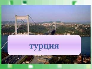 Страна контролирует важный водный путь – пролив Босфор. турция