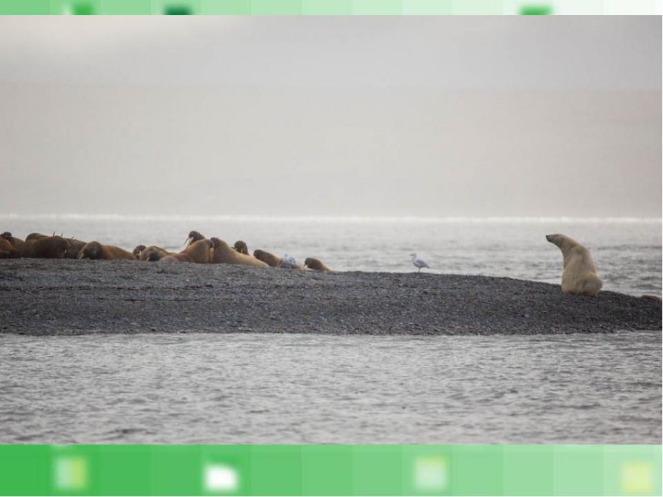 единственная в мире страна, омываемая 12 морями.