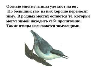 Осенью многие птицы улетают на юг. Но большинство из них хорошо переносят зим