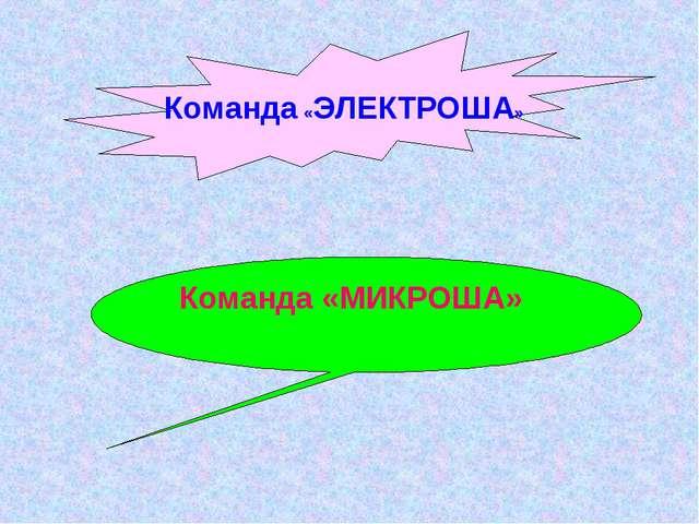 Команда «МИКРОША» Команда «ЭЛЕКТРОША»