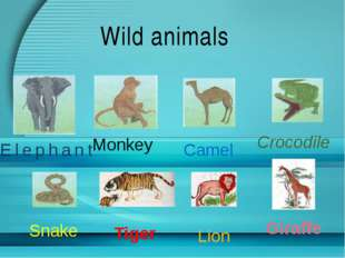 Wild animals Elephant Monkey Camel Crocodile Snake Tiger Lion Giraffe