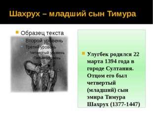 Шахрух – младший сын Тимура Улугбек родился 22 марта 1394 года в городе Султа