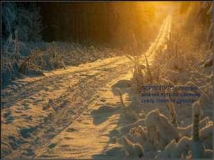 ПЕРВОПУТОК-первый зимний путь по свежему снегу. Зимняя дорога.
