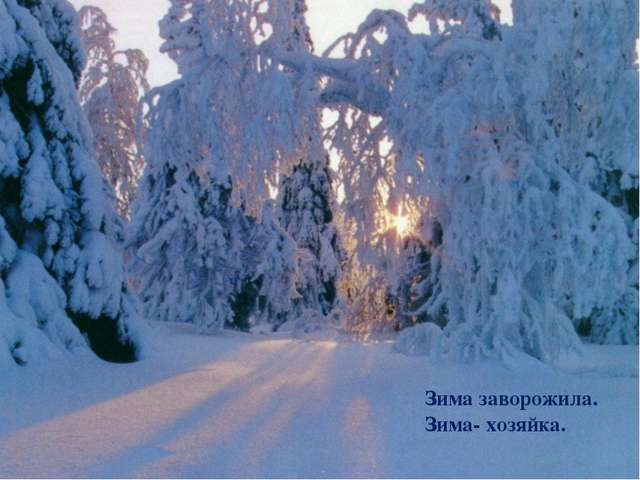 Зима заворожила. Зима- хозяйка.