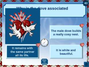 Why is the dove associated with love? It takes a good care of its partner. It