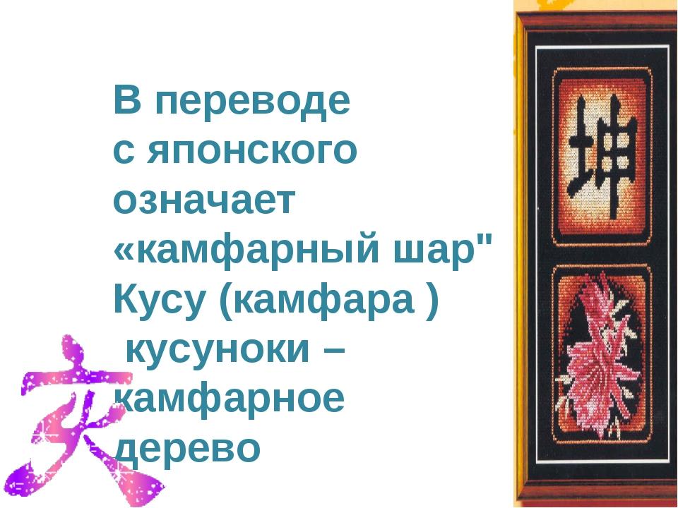"""В переводе c японского означает «камфарный шар"""" Кусу (камфара ) кусуноки – ка..."""