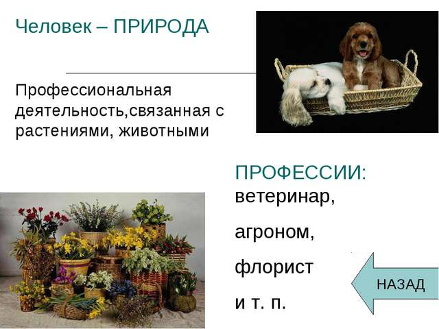 Человек – ПРИРОДА Профессиональная деятельность,связанная с растениями, живот...