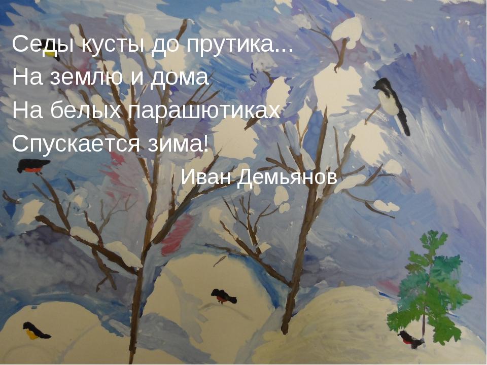 Седы кусты до прутика... На землю и дома На белых парашютиках Спускается зим...
