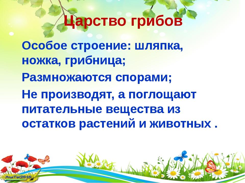Царство грибов Особое строение: шляпка, ножка, грибница; Размножаются спорами...