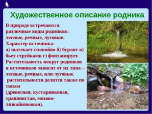 из 21 В природе встречаются различные виды родников: лесные, речные, луговые