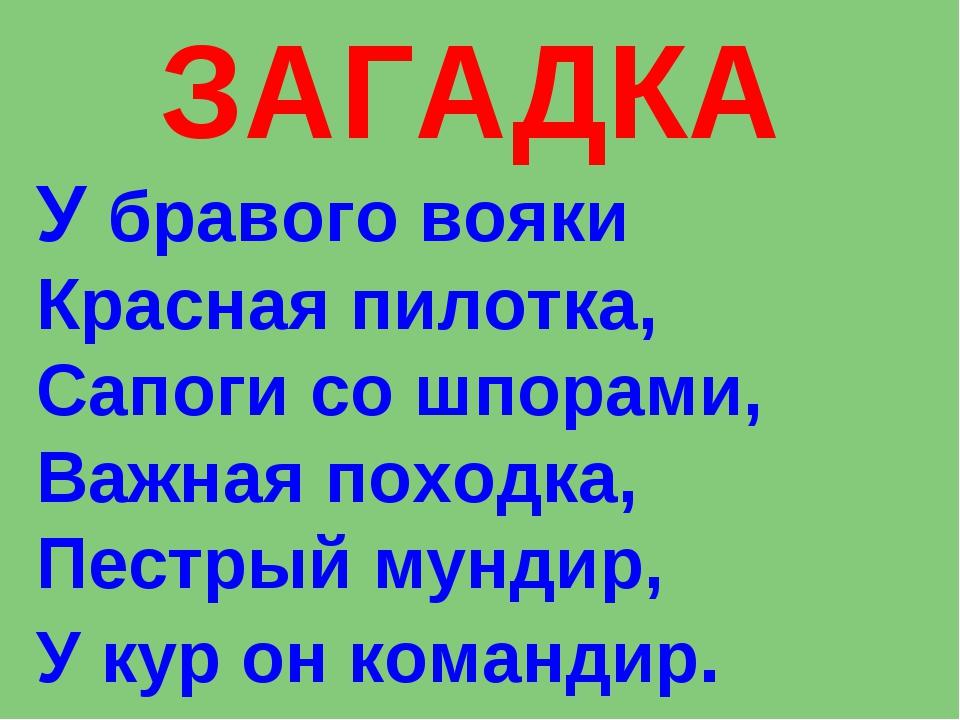 ЗАГАДКА У бравого вояки Красная пилотка, Сапоги со шпорами, Важная походка, П...