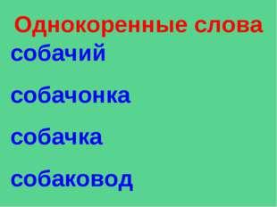 Однокоренные слова собачий собачонка собачка собаковод