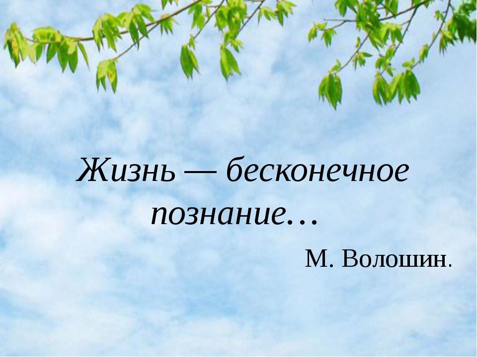 Жизнь — бесконечное познание… М. Волошин.