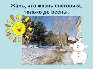 Жаль, что жизнь снеговика, только до весны.
