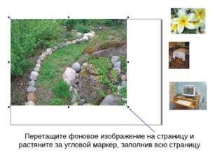 Перетащите фоновое изображение на страницу и растяните за угловой маркер, зап