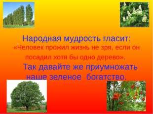 Народная мудрость гласит: «Человек прожил жизнь не зря, если он посадил хотя